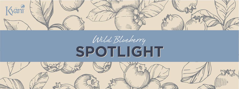 Wild Blueberry Spotlight