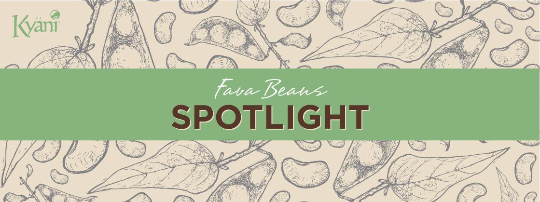 Fava Beans Ingredient Spotlight