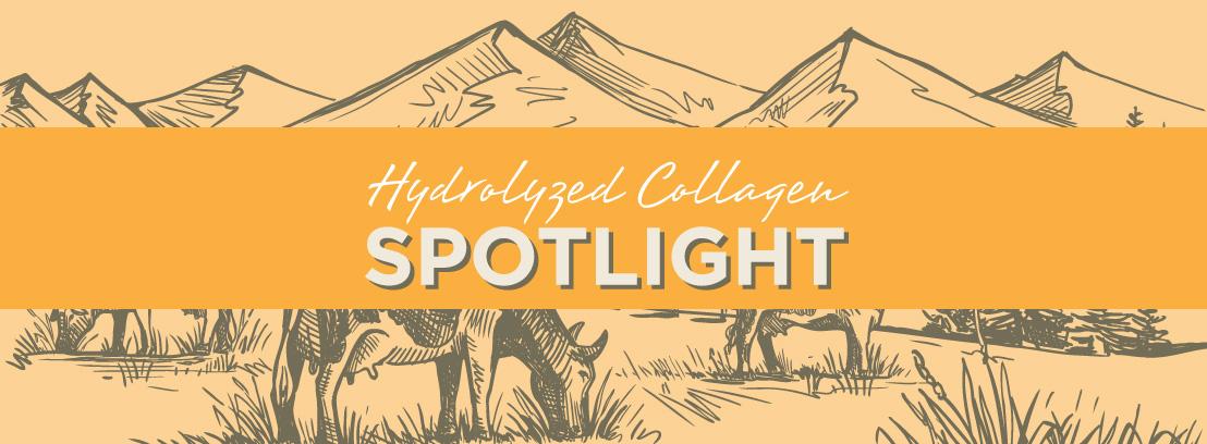 Hydrolyzed Collagen Spotlight